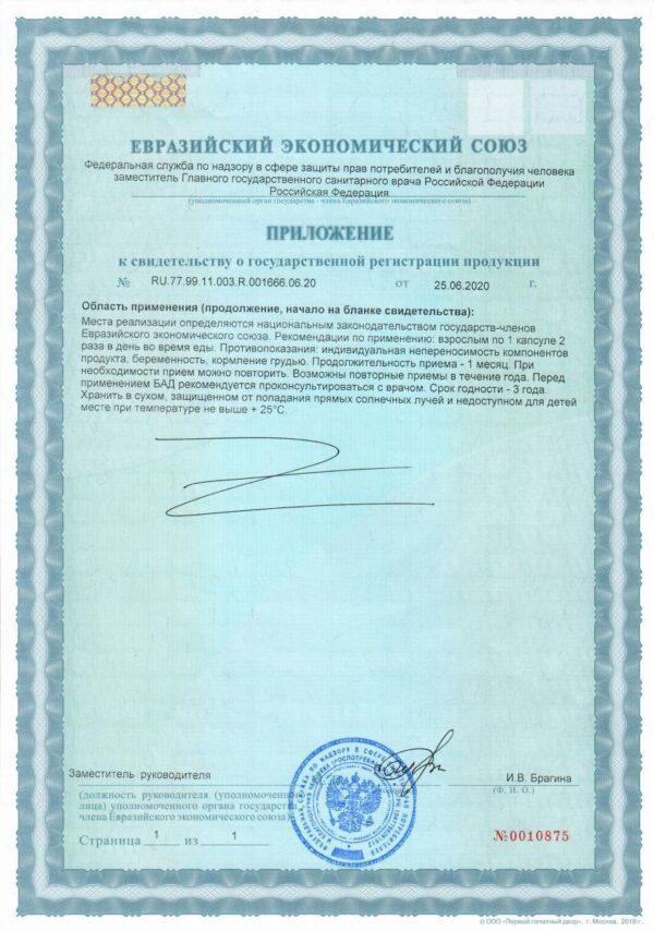 Приложение к свидетельству о государственной регистрации ИНСУНОЛ
